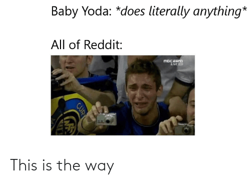Reddit, Yoda, and Live: Baby Yoda: *does literally anything*  All of Reddit:  LIVE ND  CUR This is the way