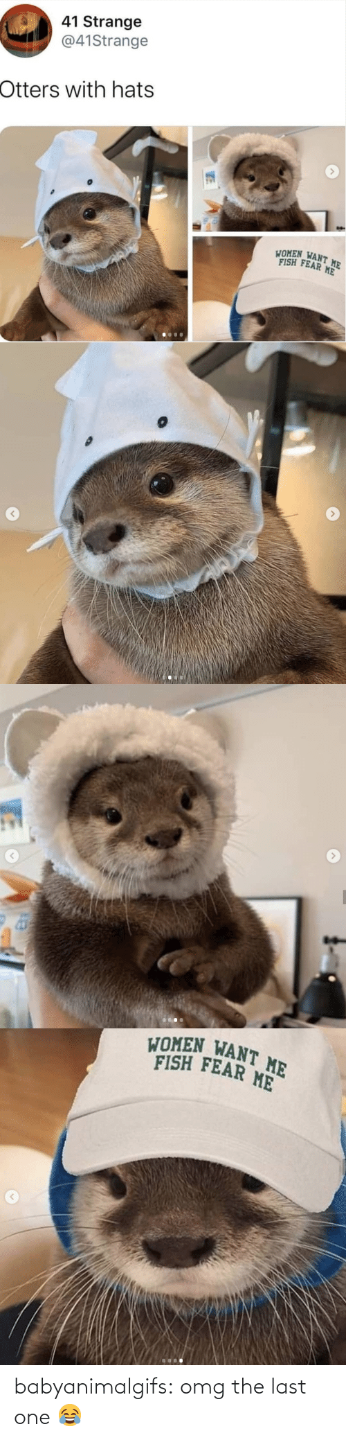The Last: babyanimalgifs:   omg the last one 😂