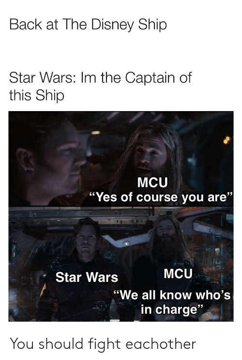 """Im The Captain: Back at The Disney Ship  Star Wars: Im the Captain of  this Ship  MCU  / """"Yes of course you are""""  MCU  Star Wars  """"We all know who's  in charge"""" You should fight eachother"""