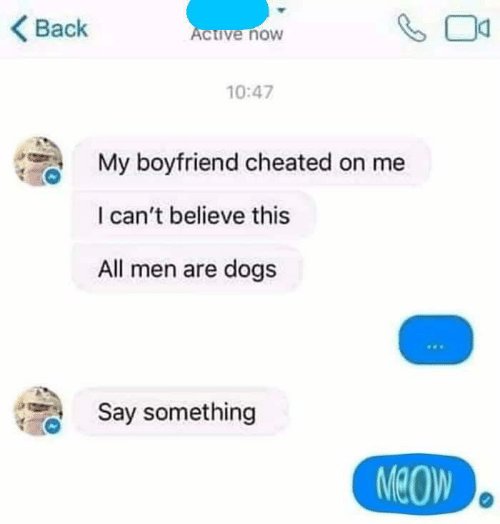 Dogs, Boyfriend, and Back: Back  ive noW  10:47  My boyfriend cheated on me  I can't believe this  All men are dogs  Say something  MeOW