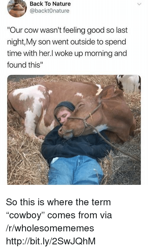 "feeling good: Back To Nature  @backtOnature  Our cow wasn't feeling good so last  night,My son went outside to spend  time with her.l woke up morning and  found this So this is where the term ""cowboy"" comes from via /r/wholesomememes http://bit.ly/2SwJQhM"