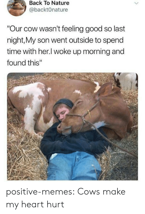 "feeling good: Back To Nature  @backtOnature  ""Our cow wasn't feeling good so last  night,My son went outside to spend  time with her.l woke up morning and  found this'"" positive-memes:  Cows make my heart hurt"