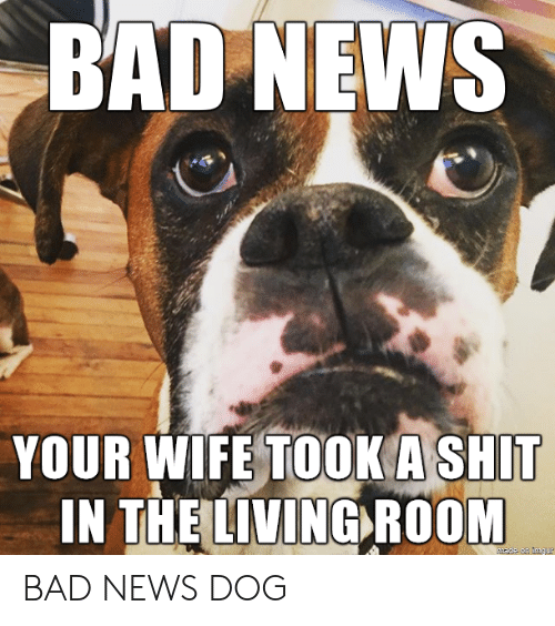 A Shit: BAD NEWS  YOUR WIFE TOOK A SHIT  IN THE LIVING ROOM BAD NEWS DOG