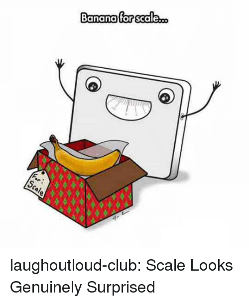 Club, Tumblr, and Banana: Banana for scale... laughoutloud-club:  Scale Looks Genuinely Surprised