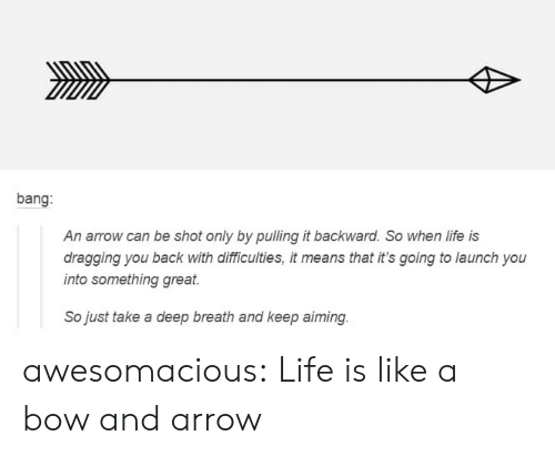 Life, Tumblr, and Arrow: bang:  An arrow can be shot only by pulling it backward. So when life is  dragging you back with dlifficulties, it means that it's going to launch you  into something great  So just take a deep breath and keep aiming awesomacious:  Life is like a bow and arrow
