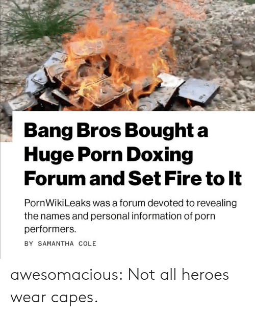 Fire, Tumblr, and Blog: Bang Bros Bought a  Huge Porn Doxing  Forum and Set Fire to It  PornWikiLeaks was a forum devoted to revealing  the names and personal information of porn  performers  BY SAMANTHA COLE awesomacious:  Not all heroes wear capes.