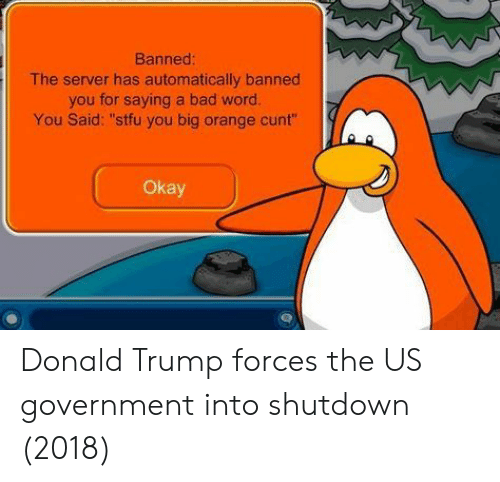 "Shutdown: Banned  The server has automatically banned  you for saying a bad word.  You Said: ""stfu you big orange cunt""  Okay Donald Trump forces the US government into shutdown (2018)"