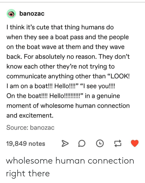 """Its Cute: banozac  l think it's cute that thing humans do  When they see a boat pass and tne people  on the boat wave at them and they wave  back. For absolutely no reason. They don't  know each other they're not trying to  communicate anything other than """"LOOK!  I am on a boat!! Hello!!!!"""" """"I see you!!!!  29 CG  moment of wholesome human connection  and excitement.  Source: banozac  19,849 notesD wholesome human connection right there"""