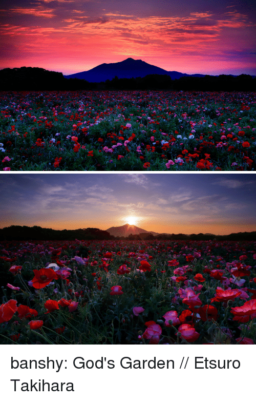 Tumblr, Blog, and Http: banshy:  God's Garden // Etsuro Takihara