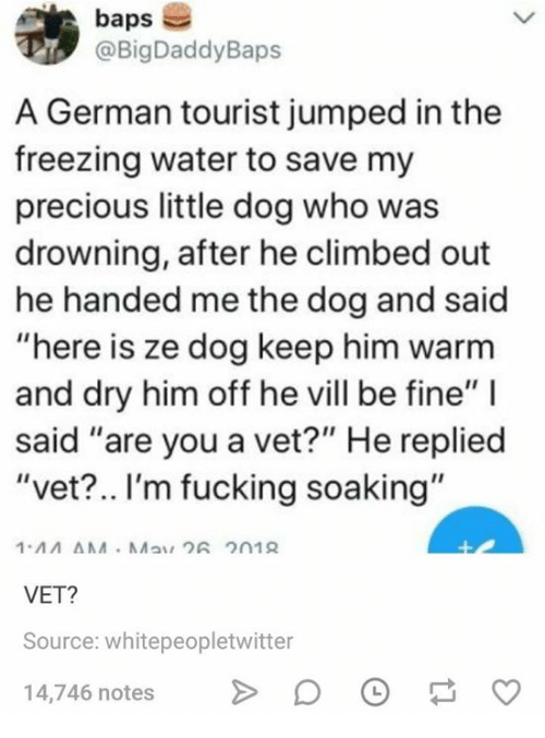 """Tourist: baps  @BigDaddyBaps  A German tourist jumped in the  freezing water to save my  precious little dog who was  drowning, after he climbed out  he handed me the dog and said  """"here is ze dog keep him warm  and dry him off he vill be fine"""" I  said """"are you a vet?"""" He replied  """"vet?.. I'm fucking soaking""""  VET?  Source: whitepeopletwitter  4,746 notes D"""