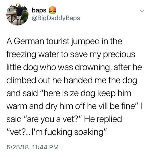 """Tourist: baps  @BigDaddyBaps  A German tourist jumped in the  freezing water to save my precious  little dog who was drowning, after he  climbed out he handed me the dog  and said """"here is ze dog keep him  warm and dry him off he vill be fine""""  said """"are you a vet?"""" He repliec  """"vet? ..I'm fucking soaking""""  5/25/18. 11:44 PM"""