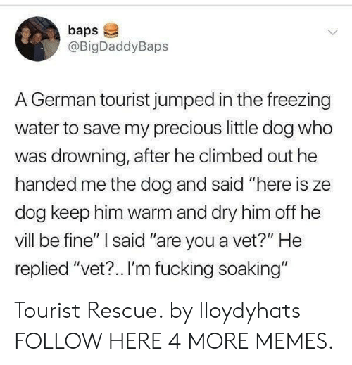 """Tourist: baps  @BigDaddyBaps  A German tourist jumped in the freezing  water to save my precious little dog who  was drowning, after he climbed out he  handed me the dog and said """"here is ze  dog keep him warm and dry him off he  vill be fine"""" said """"are you a vet?"""" He  replied """"vet?.. I'm fucking soaking"""" Tourist Rescue. by lloydyhats FOLLOW HERE 4 MORE MEMES."""