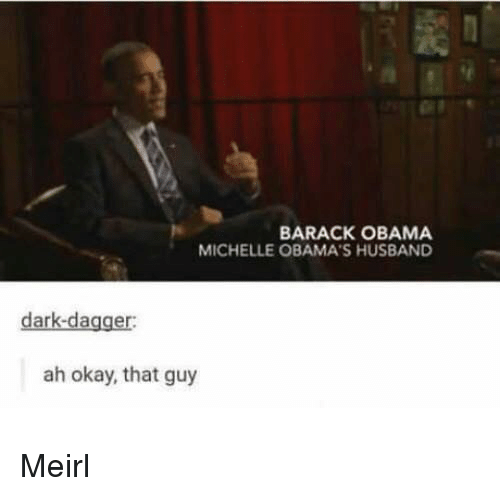 Obama, Barack Obama, and Okay: BARACK OBAMA  MICHELLE OBAMA'S HUSBAND  dark-dagger:  ah okay, that guy Meirl