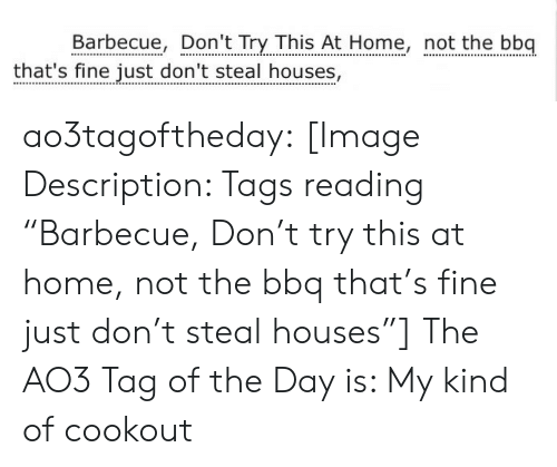 "steal: Barbecue, Don't Try This At Home, not the bbq  that's fine just don't steal houses, ao3tagoftheday:  [Image Description: Tags reading ""Barbecue, Don't try this at home, not the bbq that's fine just don't steal houses""]  The AO3 Tag of the Day is: My kind of cookout"