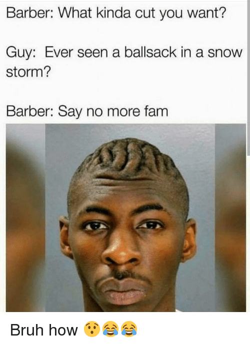 snow storm: Barber: What kinda cut you want?  Guy: Ever seen a ballsack in a snow  storm?  Barber: Say no more fam Bruh how 😯😂😂