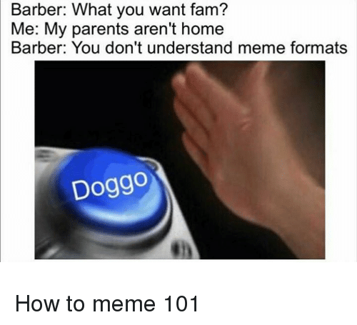 Dont Understand Meme: Barber: What you want fam?  Me: My parents aren't home  Barber: You don't understand meme formats  Doggo <p>How to meme 101</p>