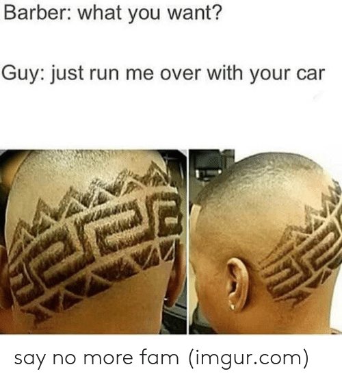 Say No More Fam: Barber: what you want?  Guy: just run me over with your car say no more fam (imgur.com)