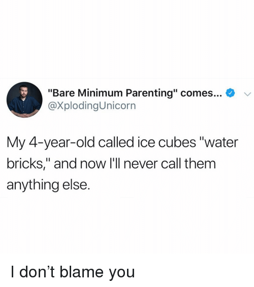 """Funny, Water, and Old: """"Bare Minimum Parenting"""" comes... *  @XplodingUnicorn  My 4-vear-old called ice cubes """"water  bricks,"""" and now I'll never call them  anything else. I don't blame you"""
