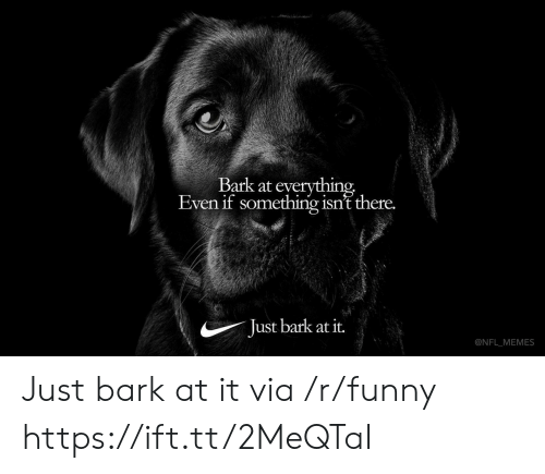 Funny, Memes, and Nfl: Bark at everything  Even if something isn't there.  Just bark at it.  @NFL MEMES Just bark at it via /r/funny https://ift.tt/2MeQTaI