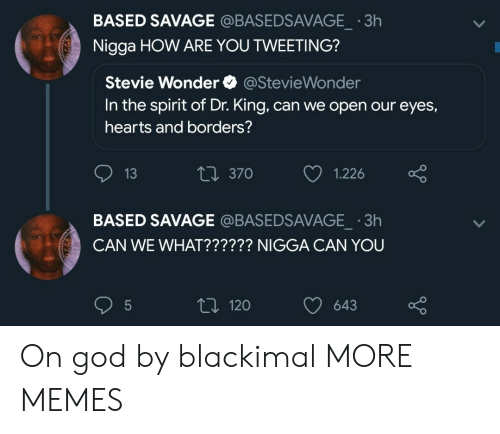 Dank, God, and Memes: BASED SAVAGE @BASEDSAVAGE  Nigga HOW ARE YOU TWEETING?  3h  Stevie Wonder @StevieWonder  In the spirit of Dr. King, can we open our eyes,  hearts and borders?  13  t 370  1.226  BASED SAVAGE @BASEDSAVAGE 3h  CAN WE WHAT?????? NIGGA CAN YOU  t 120 643 On god by blackimal MORE MEMES