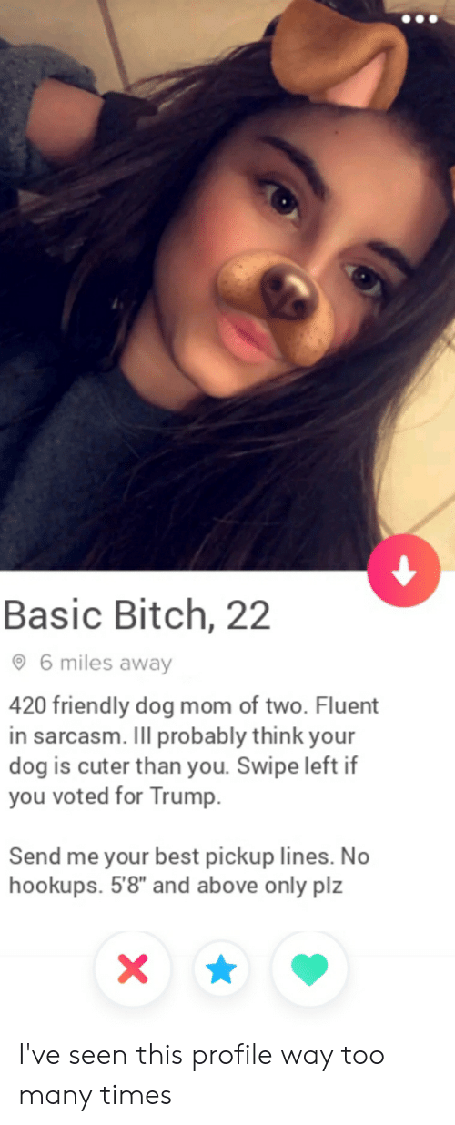 """Basic Bitch, Bitch, and Best: Basic Bitch, 22  6 miles away  420 friendly dog mom of two. Fluent  in sarcasm. Ill probably think your  dog is cuter than you. Swipe left if  you voted for Trump.  Send me your best pickup lines. No  hookups. 5'8"""" and above only plz I've seen this profile way too many times"""