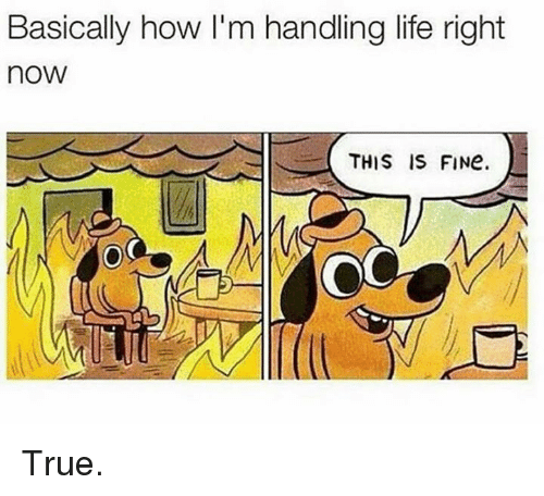 Memes, 🤖, and Basic: Basically how I'm handling life right  noW  THIS IS FINe.  OC True.