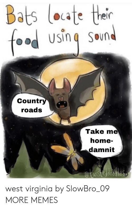 Roads: Bats loate thair  food  SOund  Country  roads  Take me  home-  damnit  WIstedeodles west virginia by SlowBro_09 MORE MEMES