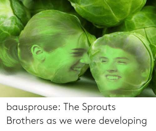 Target, Tumblr, and Blog: bausprouse: The Sprouts Brothers as we were developing