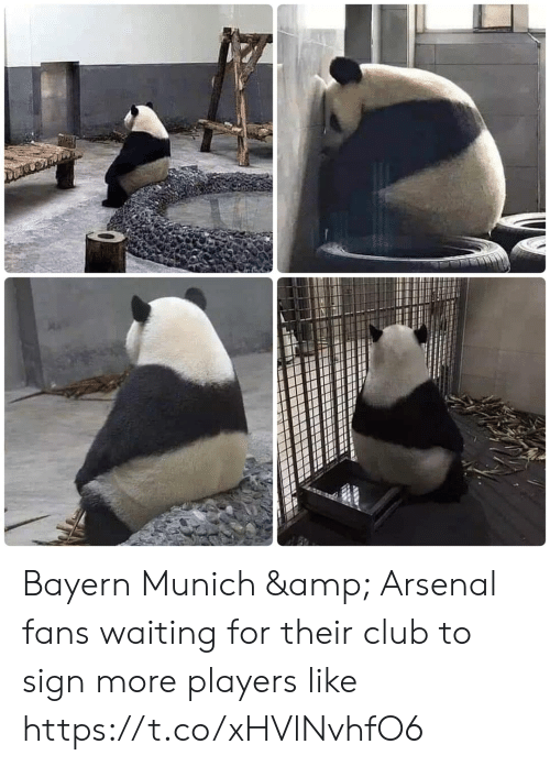 Arsenal, Club, and Memes: Bayern Munich & Arsenal fans waiting for their club to sign more players like https://t.co/xHVlNvhfO6