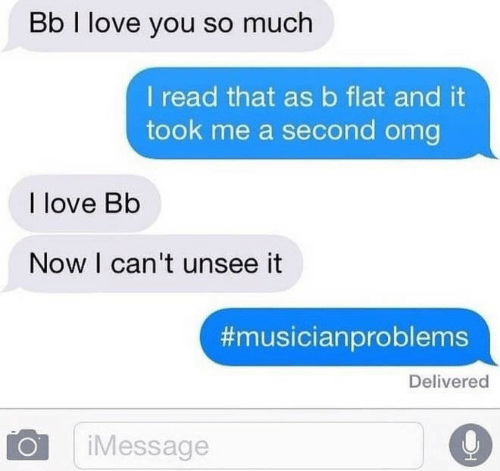 Cant Unsee: Bb I love you so much  I read that asb flat and it  took me a second omg  I love Bb  Now I can't unsee it  #musicianproblems  Delivered  iMessage
