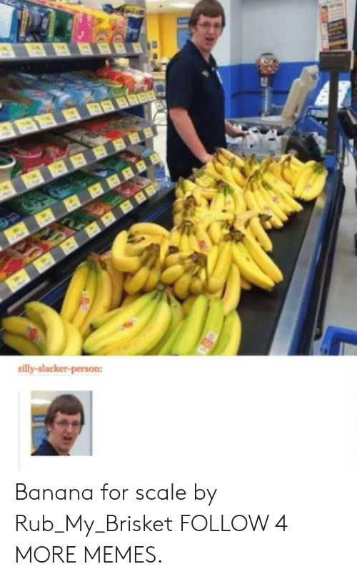 For Scale: BBBBBR  silly-slacker-person: Banana for scale by Rub_My_Brisket FOLLOW 4 MORE MEMES.