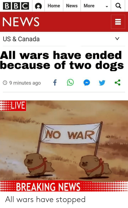 Dogs, News, and Breaking News: BBC  Home  News  MoreQ  NEWS  US & Canada  All wars have ended  because of two dogs  O 9 minutes ago  NO WAR  BREAKING NEWS All wars have stopped