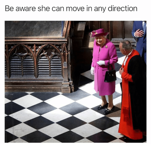 Dank, 🤖, and Can: Be aware she can move in any direction