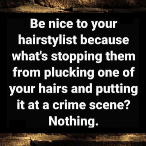 Crime, Dank, and Nice: Be nice to your  hairstylist because  what's stopping them  from plucking one of  your hairs and putting  it at a crime scene?  Nothing.