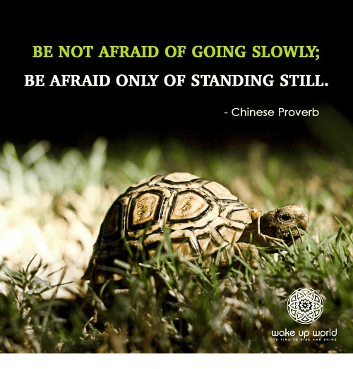 Chinese, Time, and World: BE NOT AFRAID OF GOING SLOWLY;  BE AFRAID ONLY OF STANDING STILL.  Chinese Proverb  wake up world  TS TIME TO RISE AND SHINE
