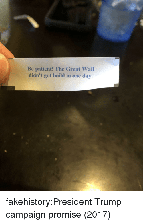Tumblr, Blog, and Patient: Be patient! The Great Wall  didn't got build in one day. fakehistory:President Trump campaign promise (2017)