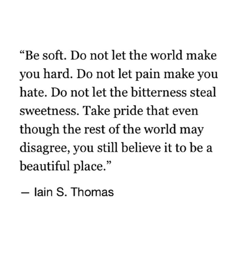 """A Beautiful Place: """"Be soft. Do not let the world make  you hard. Do not let pain make you  hate. Do not let the bitterness steal  sweetness. Take pride that even  though the rest of the world may  disagree, you still believe it to be a  beautiful place.""""  - lain S. Thomas"""