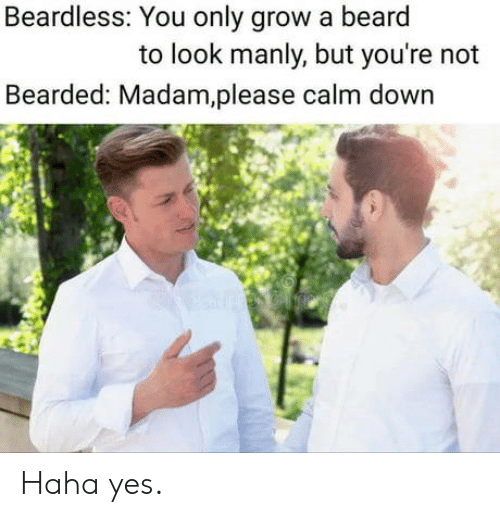 Beard, Haha, and Yes: Beardless: You only grow a beard  to look manly, but you're not  Bearded: Madam,please calm down Haha yes.