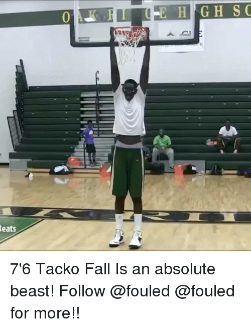 Fall, Memes, and Beats: Beats  H G H S C 7'6 Tacko Fall Is an absolute beast! Follow @fouled @fouled for more!!
