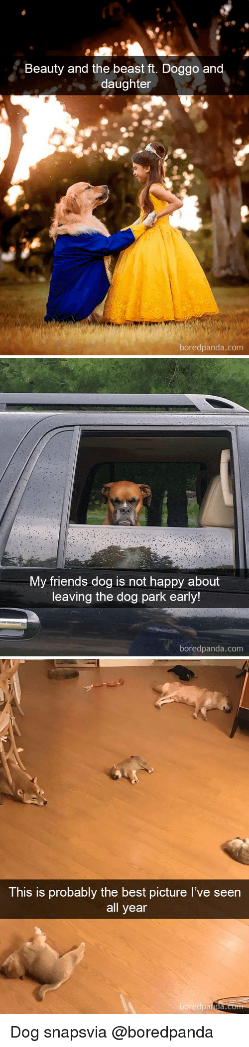 Friends, Beauty and the Beast, and Best: Beauty and the beast ft. Doggo an  daughter  boredpanda.com   My friends dog is not happy about  leaving the dog park early!  boredpanda.com   This is probably the best picture I've seen  all year  boredpa  nda. Dog snapsvia @boredpanda