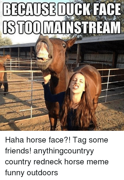 Horse Meme: BECAUSE DUCK FACE  STOOMAINSTREAM Haha horse face?! Tag some friends! anythingcountryy country redneck horse meme funny outdoors
