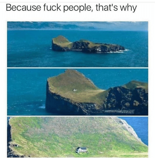 Fuck People: Because fuck people, that's why