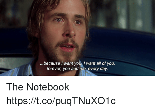 The Notebook: because I want youI want all of you,  forever, you and me, every day. The Notebook https://t.co/puqTNuXO1c