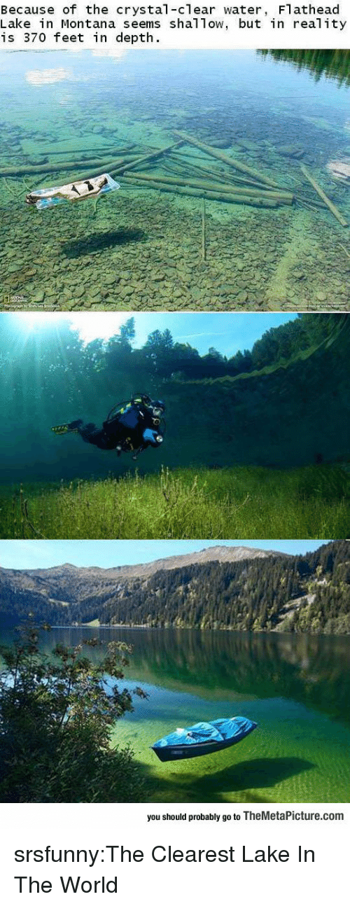Tow: Because of the crystal-clear water, Flathead  Lake in Montana seems shal Tow, but in real ity  is 370 feet in depth.  you should probably go to TheMetaPicture.com srsfunny:The Clearest Lake In The World