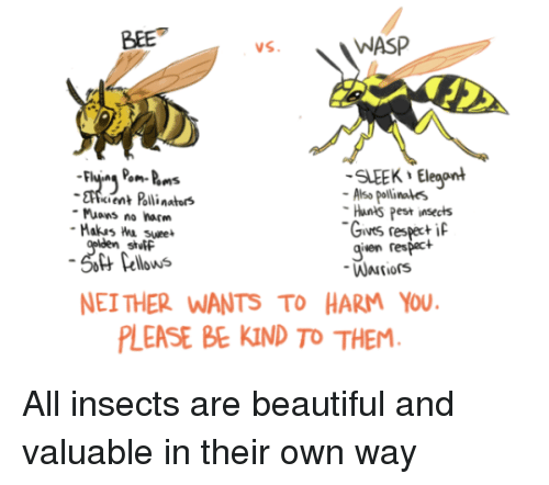 Nei: BEE  WASP  SLEEK Eleaont  cient Polli nators  Also pollinales  Hants Pest insects  Gives respeci  given respact  Muons no harm  stutF  Pellows  NEI THER WANTS TO HARM YOU  LEASE BE KIND TO THEM All insects are beautiful and valuable in their own way