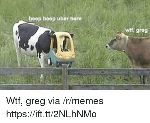 Memes, Uber, and Wtf: beep beep uber here  wtf, greg Wtf, greg via /r/memes https://ift.tt/2NLhNMo