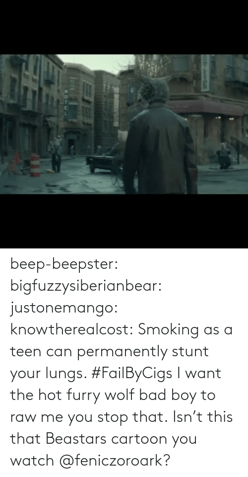Watch: beep-beepster: bigfuzzysiberianbear:  justonemango:  knowtherealcost:  Smoking as a teen can permanently stunt your lungs. #FailByCigs  I want the hot furry wolf bad boy to raw me  you stop that.     Isn't this that Beastars cartoon you watch @feniczoroark?