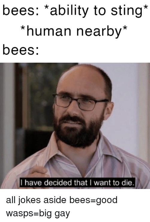 Good, Jokes, and Sting: bees: *ability to sting*  *human nearby*  bees:  I have decided that I want to die all jokes aside bees=good  wasps=big gay