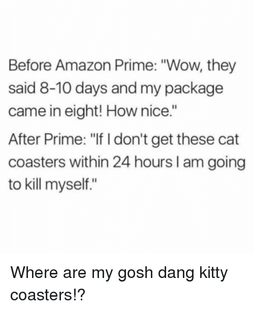 """Amazon, Amazon Prime, and Funny: Before Amazon Prime: """"Wow, they  said 8-10 days and my package  came in eight! How nice.""""  After Prime: """"If I don't get these cat  coasters within 24 hours I am going  to kill myself."""" Where are my gosh dang kitty coasters!?"""