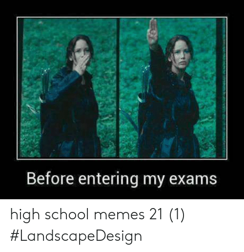 High School Memes: Before entering my exams high school memes 21 (1) #LandscapeDesign